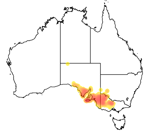 distribution map showing range of Glischrocaryon behrii in Australia