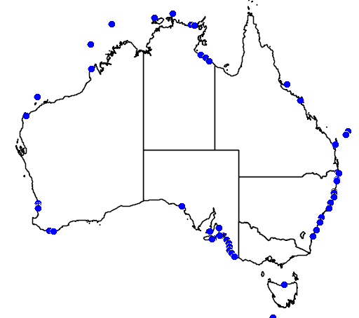 distribution map showing range of Globicephala macrorhynchus in Australia