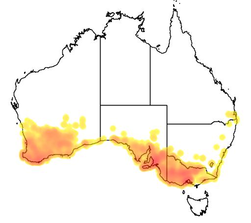 distribution map showing range of Glossopsitta porphyrocephala in Australia