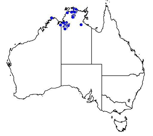 distribution map showing range of Grevillea angulata in Australia