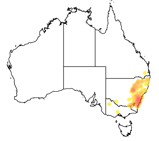 distribution map showing range of Grevillea arenaria in Australia