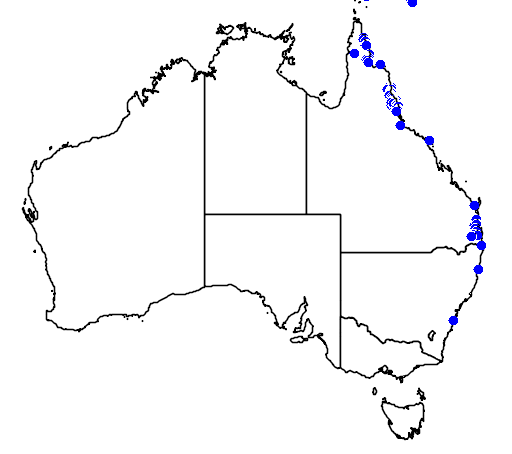 distribution map showing range of Grevillea baileyana in Australia