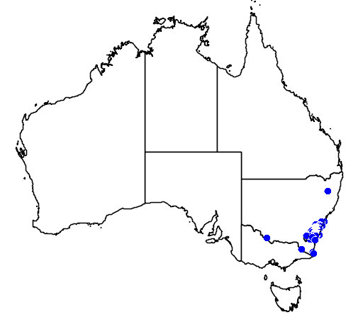 distribution map showing range of Grevillea baueri in Australia