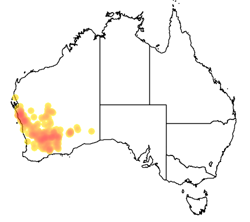 distribution map showing range of Grevillea didymobotrya in Australia