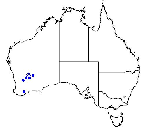 distribution map showing range of Grevillea erectiloba in Australia