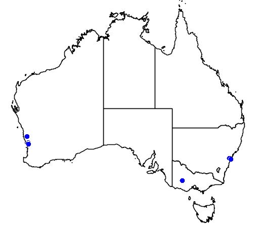 distribution map showing range of Grevillea evanescens in Australia