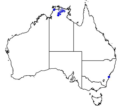 distribution map showing range of Grevillea formosa in Australia