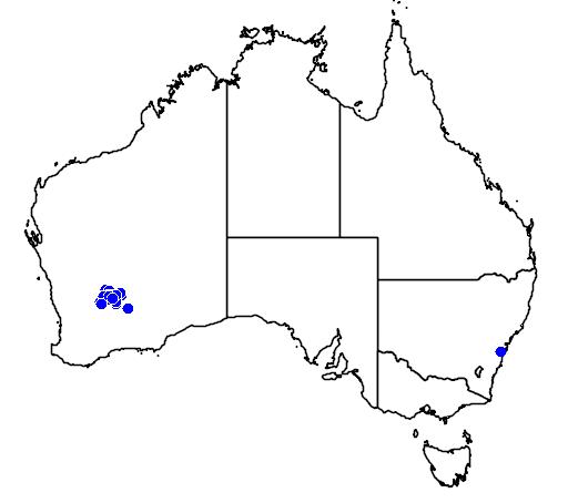 distribution map showing range of Grevillea georgeana in Australia