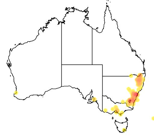 distribution map showing range of Grevillea juniperina in Australia