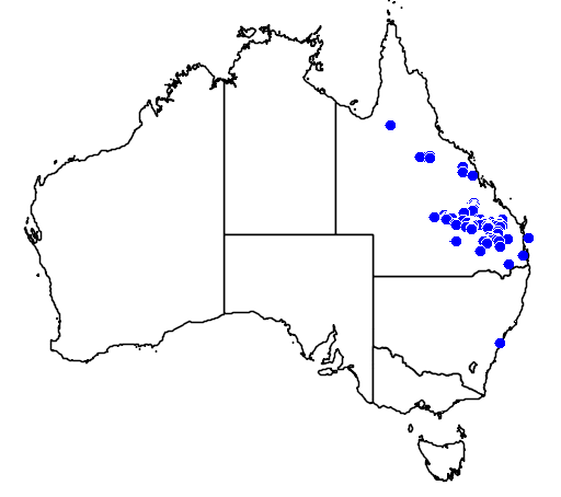 distribution map showing range of Grevillea longistyla in Australia