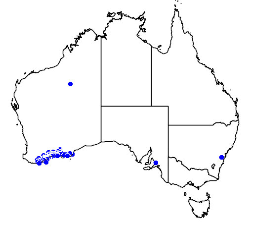 distribution map showing range of Grevillea nudiflora in Australia