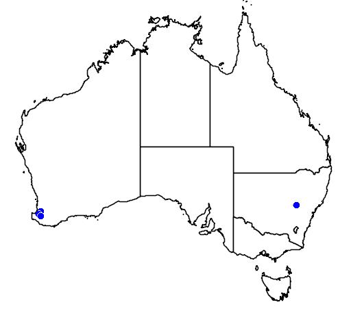 distribution map showing range of Grevillea ripicola in Australia