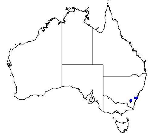 distribution map showing range of Grevillea rivularis in Australia