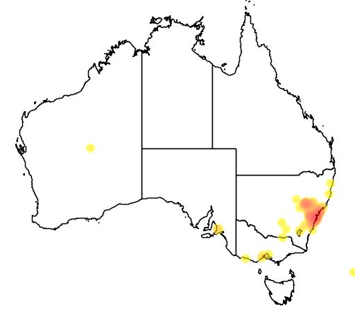 distribution map showing range of Grevillea sericea in Australia