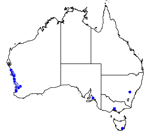 distribution map showing range of Grevillea thelemanniana in Australia