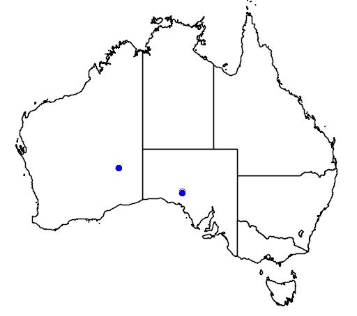 distribution map showing range of Grevillea treueriana in Australia