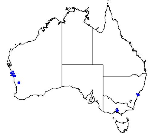 distribution map showing range of Grevillea triloba in Australia