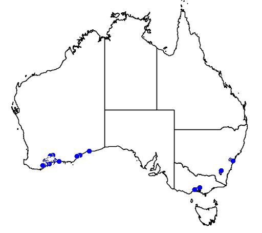 distribution map showing range of Grevillea tripartita in Australia
