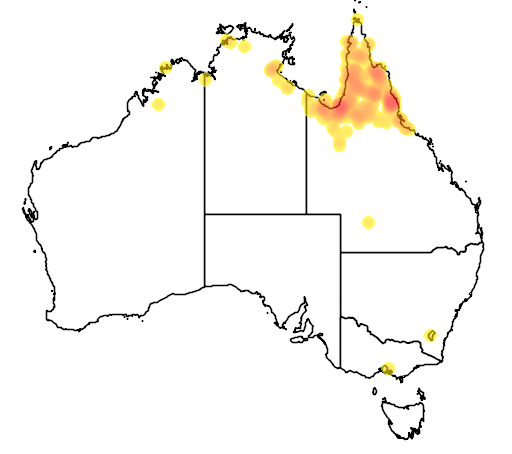distribution map showing range of Grus antigone in Australia