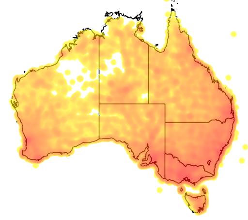 distribution map showing range of Gymnorhina tibicen in Australia