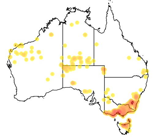 distribution map showing range of Gynatrix pulchella in Australia