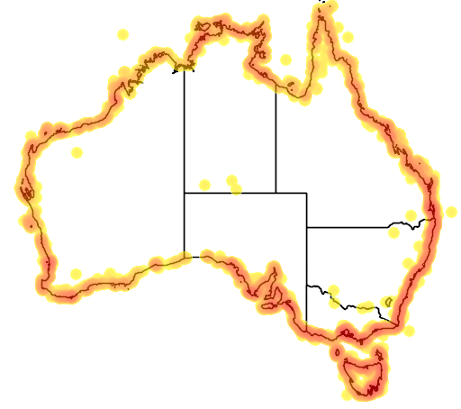 distribution map showing range of Haematopus longirostris in Australia