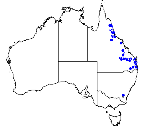 distribution map showing range of Hakea plurinervia in Australia
