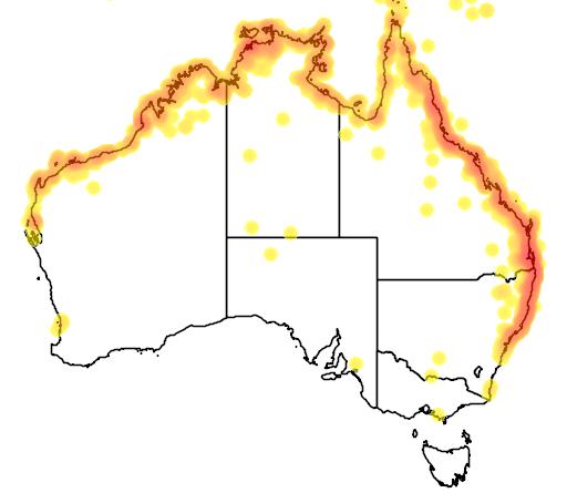 distribution map showing range of Haliastur indus in Australia