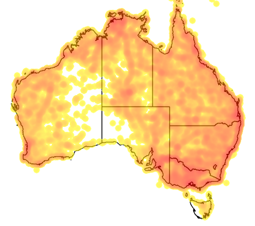 distribution map showing range of Haliastur sphenurus in Australia