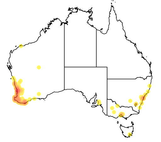 distribution map showing range of Hardenbergia comptoniana in Australia