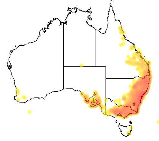 distribution map showing range of Hardenbergia violacea in Australia