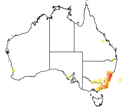 distribution map showing range of Heleioporus australiacus in Australia