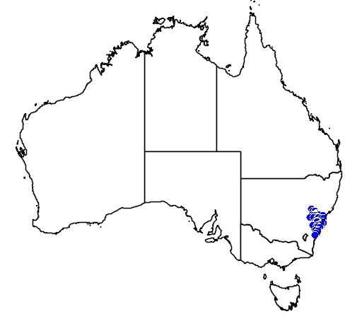 distribution map showing range of Hoplocephalus bungaroides in Australia