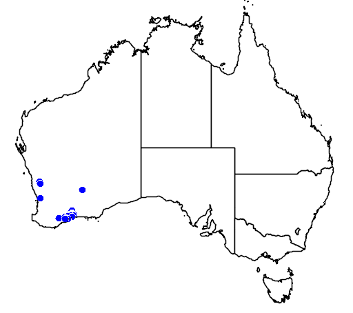 distribution map showing range of Hovea acanthoclada in Australia