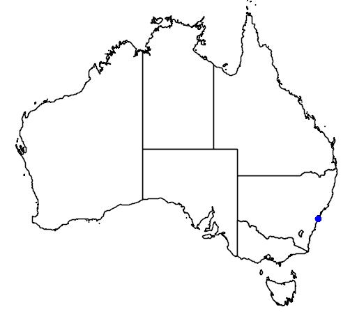 distribution map showing range of Howea belmoreana in Australia