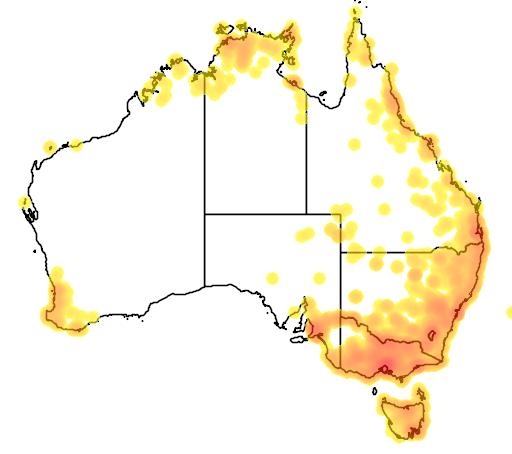 distribution map showing range of Hydromys chrysogaster in Australia