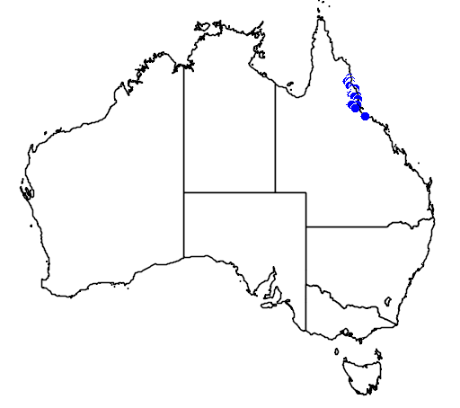 distribution map showing range of Hypsiprymnodon moschatus in Australia