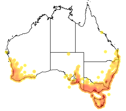 distribution map showing range of Isolepis cernua in Australia