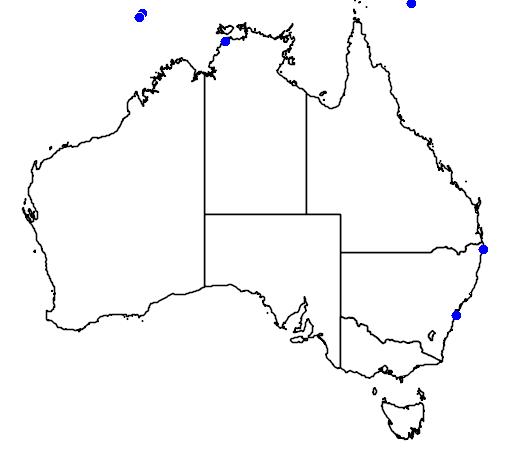 distribution map showing range of Laticauda colubrina in Australia
