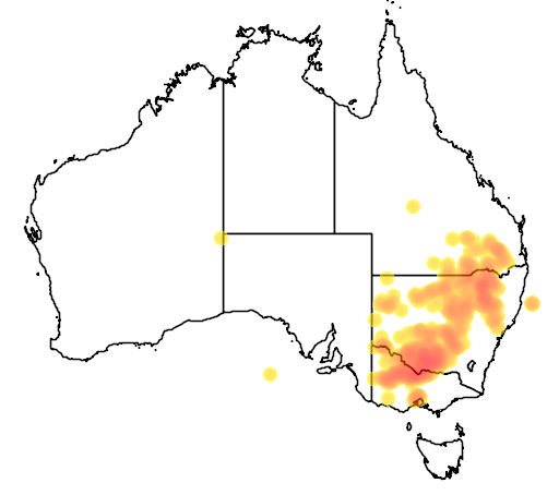 distribution map showing range of Leiocarpa panaetioides in Australia