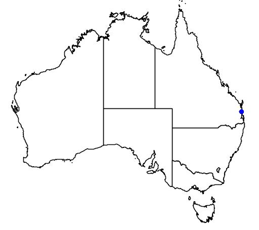 distribution map showing range of Lepidorrhachis mooreana in Australia