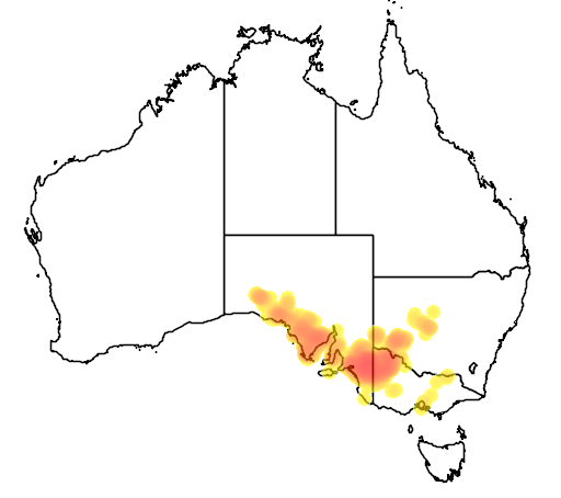 distribution map showing range of Leptospermum coriaceum in Australia