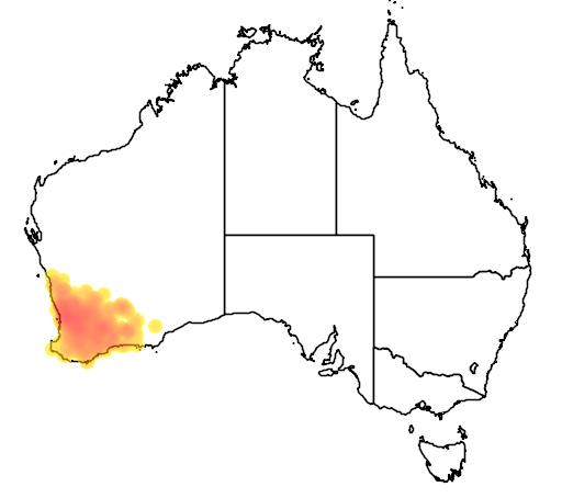 distribution map showing range of Leptospermum erubescens in Australia