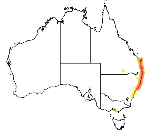distribution map showing range of Leptospermum liversidgei in Australia