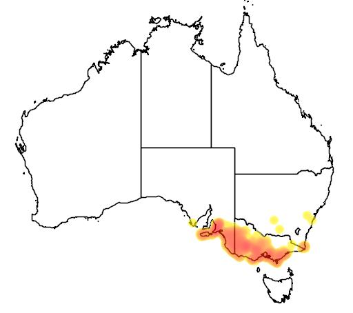 distribution map showing range of Leptospermum myrsinoides in Australia