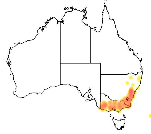 distribution map showing range of Leptospermum obovatum in Australia