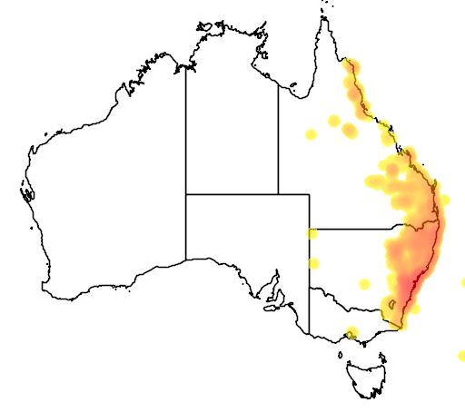 distribution map showing range of Leptospermum polygalifolium in Australia