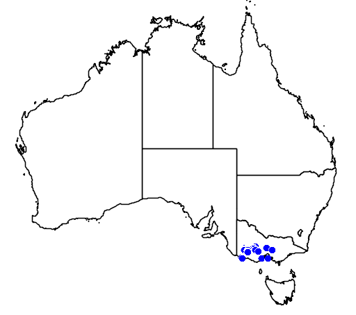 distribution map showing range of Leptospermum turbinatum in Australia