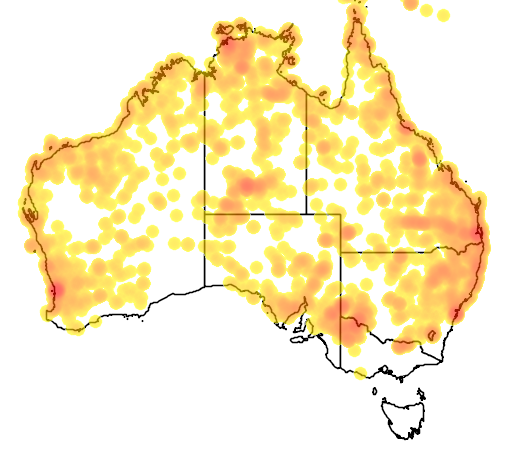 distribution map showing range of Lialis burtonis in Australia