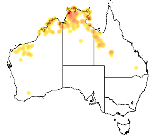 distribution map showing range of Liasis olivaceus in Australia